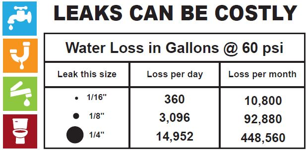 Leaks can be costly chart