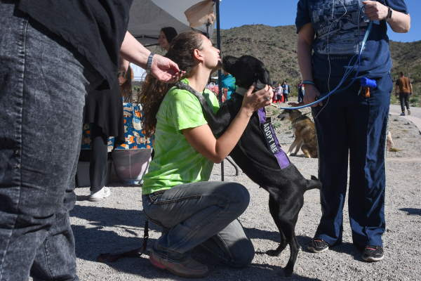 BARK in the Park returns to Skyline Park