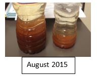 August 2015 Water Sample