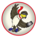 Falcon Digital App logo