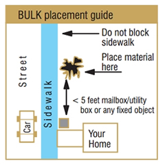 bulk placement guide