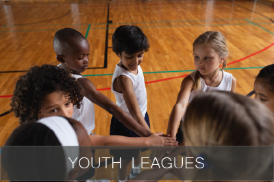 Youth Leagues icon