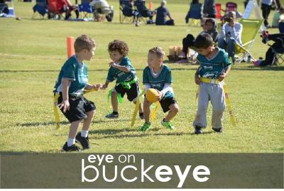 Eye on Buckeye Icon